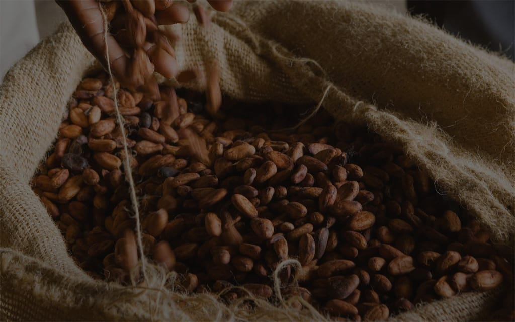 Martinez Chocolade cacao bonen